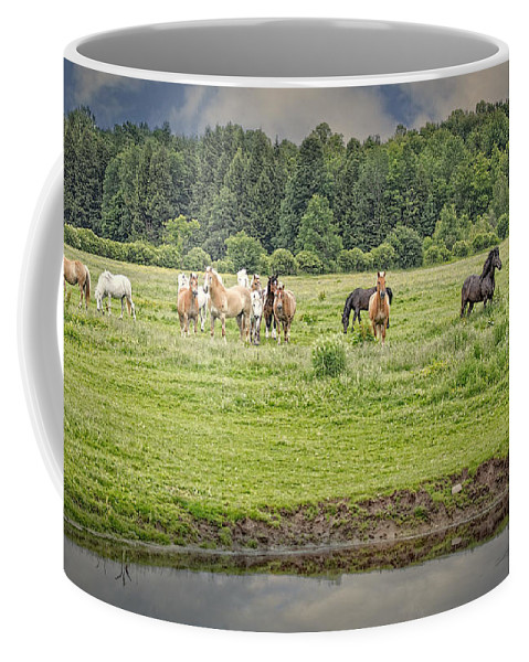 Horse Coffee Mug featuring the photograph Leadership And Respect by Everet Regal