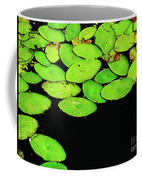 Swamp Coffee Mug featuring the photograph Leafy Swamp by Ann Horn