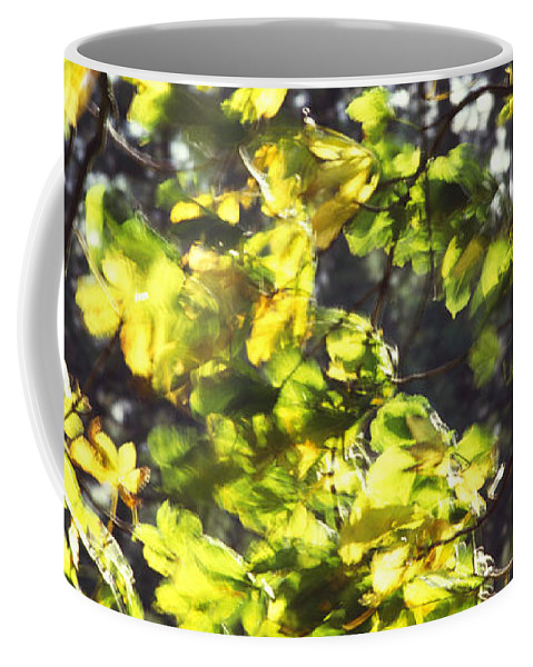 Leaves Coffee Mug featuring the photograph Leaves Blowing by Jon Delorme