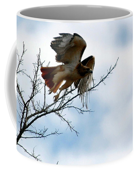 Coffee Mug featuring the photograph Leaving The Perch by Kim Blaylock
