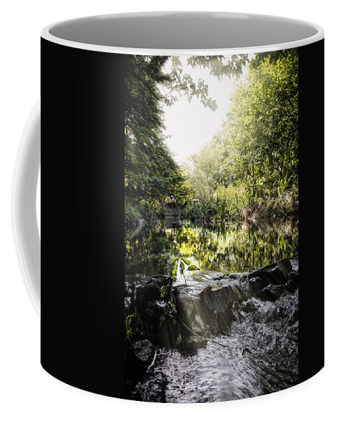 Water Forest Nature Tree Green River Leaf Outdoors Landscape Wood Summer Fly Boat Beauty Park Environment Waterfall Travel Colours Stream Grass Red Light Plant Season Fall Reflection Natural Background Bush Lake Coffee Mug featuring the photograph Let The Light Shine by John Swartz