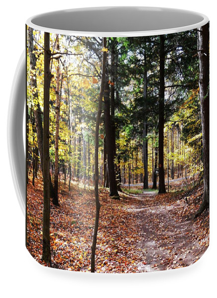 Autumn Coffee Mug featuring the photograph Let's Take A Walk In The Woods by Karen Majkrzak