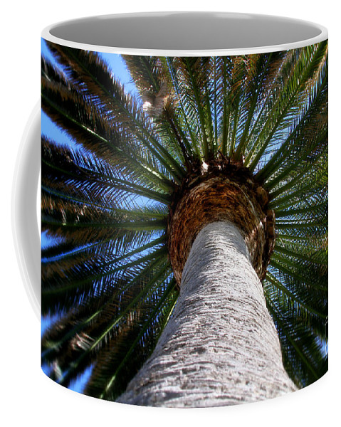 Palm Tree Coffee Mug featuring the photograph Life Is Looking Up By Diana Sainz by Diana Raquel Sainz