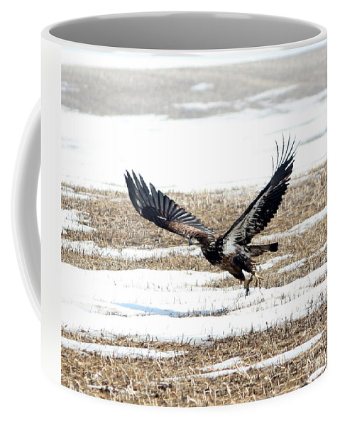 Bald Eagle Coffee Mug featuring the photograph Lift Off by Lori Tordsen