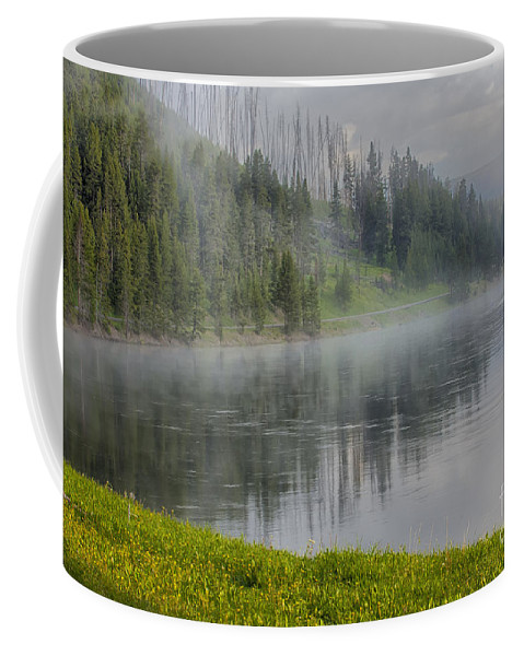 Yellowstone Coffee Mug featuring the photograph Lifting Fog On The Yellowstone River by Sandra Bronstein