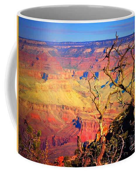 Tree Coffee Mug featuring the photograph Light In The Canyon by Tara Turner