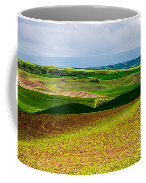 Palouse Area Coffee Mug featuring the photograph Light Shadow And Color by Bob Phillips