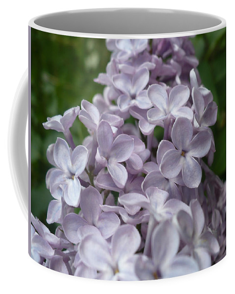 Lilac Coffee Mug featuring the photograph Lilac by Nicki Bennett