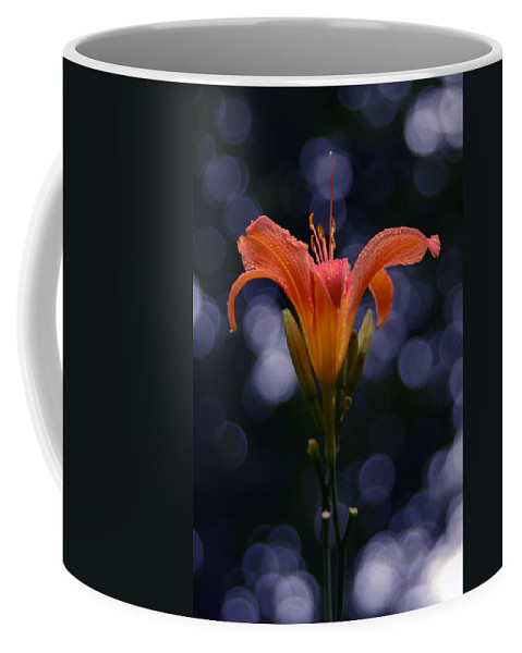 Lily After A Shower Coffee Mug featuring the photograph Lily After A Shower by Raymond Salani III