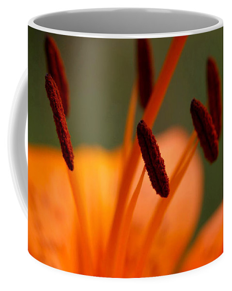 Flower Coffee Mug featuring the photograph Lily by Carol Lynch