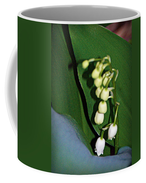 lily Of The Valley Blooms Coffee Mug featuring the photograph Lily Of The Valley by Cricket Hackmann