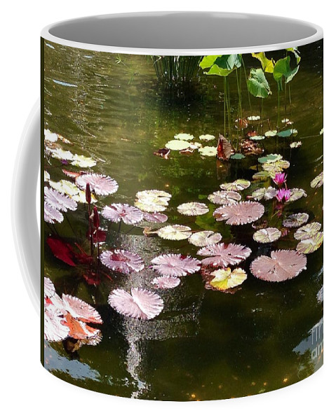 Fountain Coffee Mug featuring the photograph Lily Pads In The Fountain by Christy Gendalia