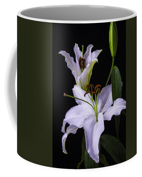 White Tiger Lily Coffee Mug featuring the photograph Lily's In Bloom by Garry Gay