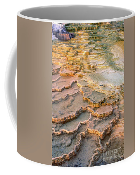 North America Coffee Mug featuring the photograph Limestone Terraces Yellowstone National Park by Dave Welling