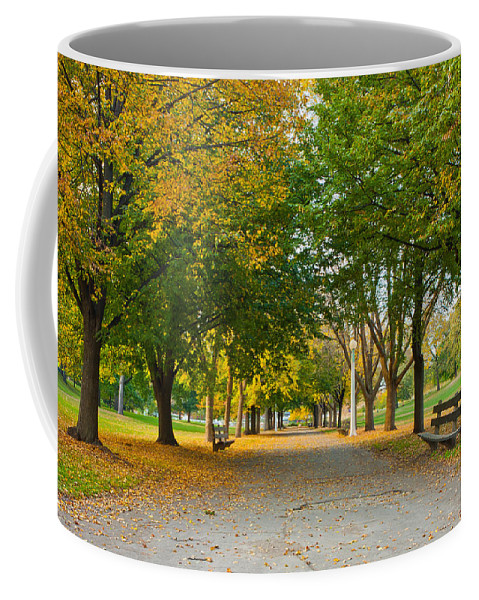Fall Coffee Mug featuring the photograph Lincoln Park In Fall by Anthony Doudt