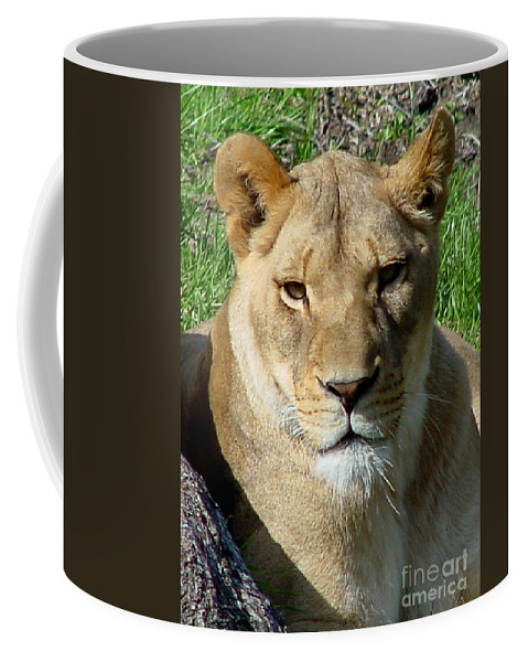 Lion Coffee Mug featuring the photograph Lioness by Gary Gingrich Galleries