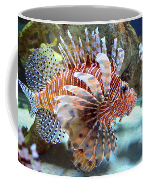 Lionfish Coffee Mug featuring the photograph Lionfish by Sandi OReilly
