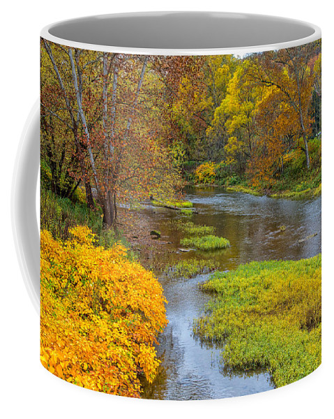 Tree Coffee Mug featuring the photograph Little Beaver Creek by John M Bailey