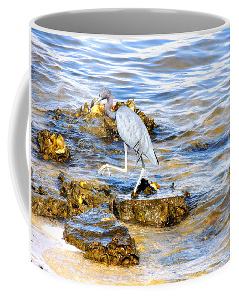 Wading Birds Coffee Mug featuring the photograph Little Blue Heron by Marilyn Holkham