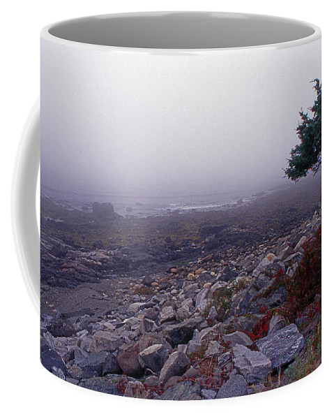 Scenic Tours Coffee Mug featuring the photograph Little Boars Head Beach by Skip Willits