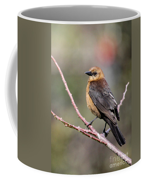 Landscape Coffee Mug featuring the photograph Little Grackle In A Big World by Sabrina L Ryan