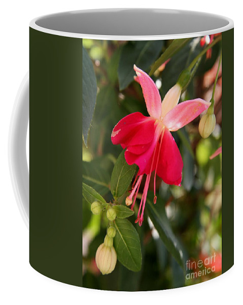 Fuchsia Coffee Mug featuring the photograph Little Red Skirt by Christiane Schulze Art And Photography