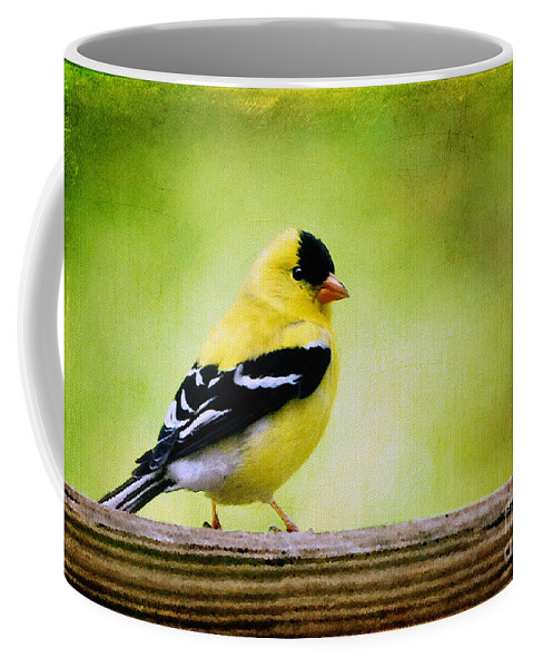 Goldfinch Coffee Mug featuring the photograph Little Sir by Lois Bryan