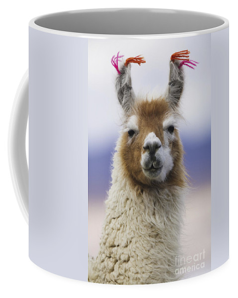 Llama Coffee Mug featuring the photograph Llama In Bolivia by Art Wolfe MINT