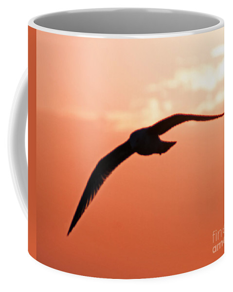 Gull Coffee Mug featuring the photograph Lofty by Joe Geraci