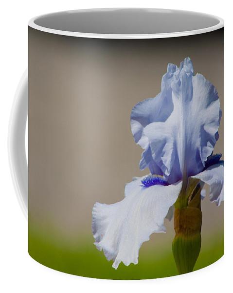 Iris Coffee Mug featuring the photograph Lone Iris by Lynne Jenkins