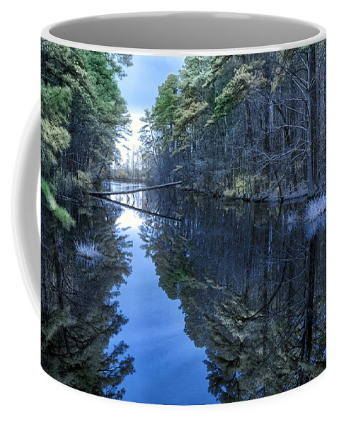 Swan Quarter Coffee Mug featuring the photograph Lone Tree by Cindy Archbell