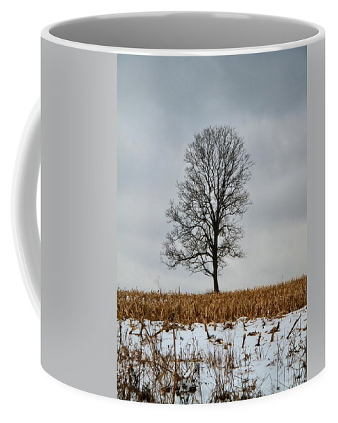 Lone Tree In Winter Coffee Mug featuring the photograph Lone Tree In Winter by Dan Sproul