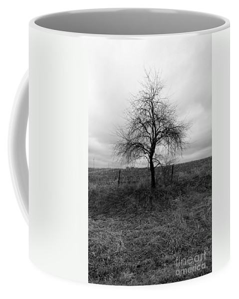 Landscape Coffee Mug featuring the photograph Lone Tree by Rick Rauzi