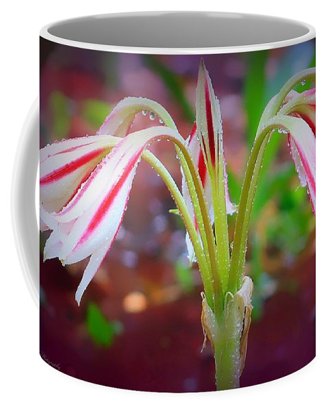 Flowers Coffee Mug featuring the photograph Lonely Lilly by Debra Forand