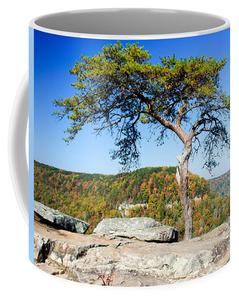 Lonely Coffee Mug featuring the photograph Lonely Lonesome Pine by Douglas Barnett