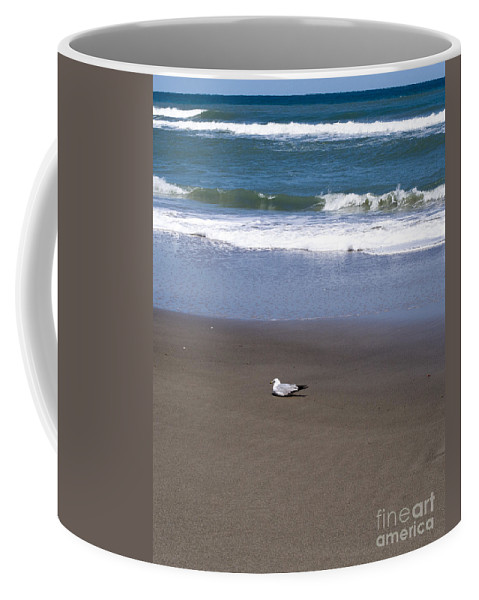 Lone Coffee Mug featuring the photograph Lonely Sea Gull by Allan Hughes