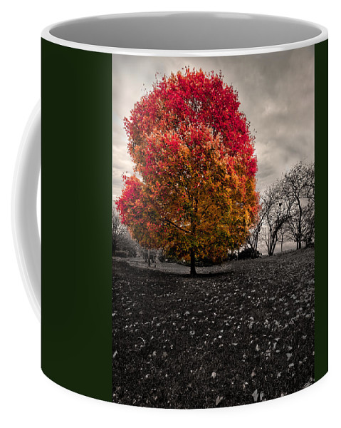 Alone Coffee Mug featuring the photograph Lonely Tree by Peter Lakomy