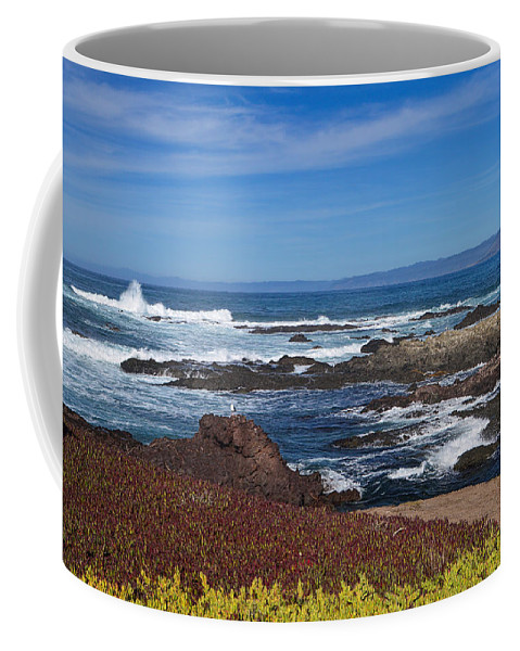 Ocean Coffee Mug featuring the photograph Lonesome Gull by Donna Blackhall