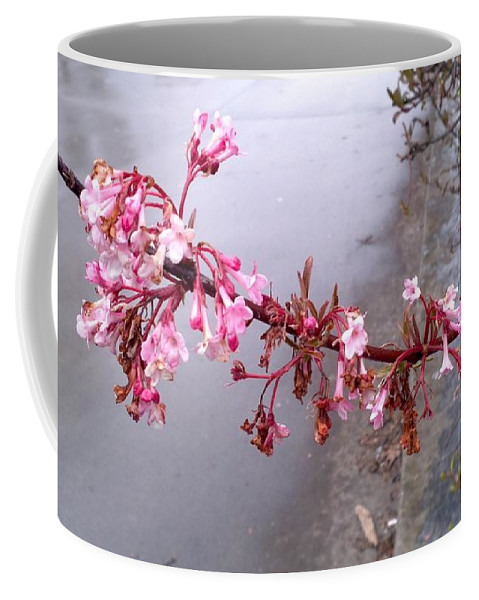 Flower Coffee Mug featuring the photograph Long Branch by Image-in Photoart