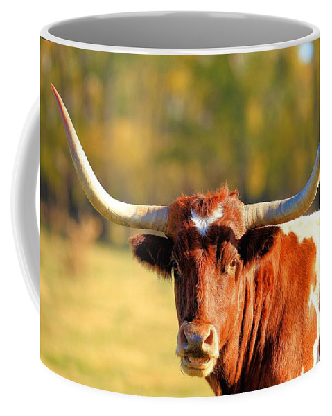 Landscape Coffee Mug featuring the photograph Longhorn by Bruce Nikle