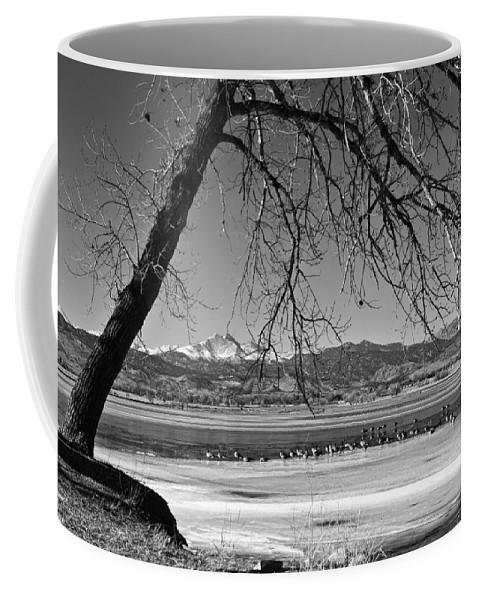 Longs Peak Coffee Mug featuring the photograph Longs Peak Geese Bw by James BO Insogna