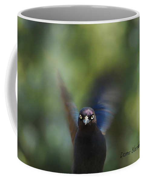 Bird Coffee Mug featuring the photograph Look Deep Into My Eyes by Donna Blackhall