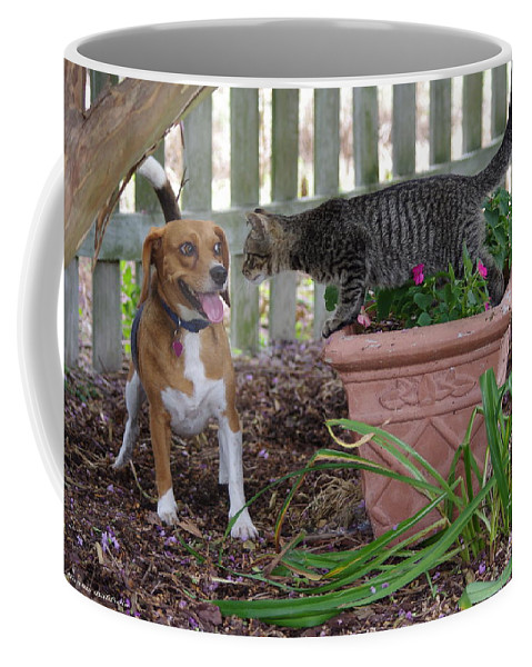 Dog Coffee Mug featuring the photograph Look Into My Eyes by Tannis Baldwin