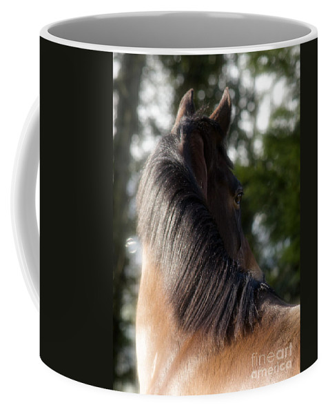 Horse Coffee Mug featuring the photograph Looking Back by Angel Ciesniarska
