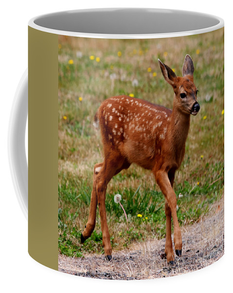 Deer Coffee Mug featuring the photograph Looking For Mom - Pacific Northwest Washington by Tap On Photo