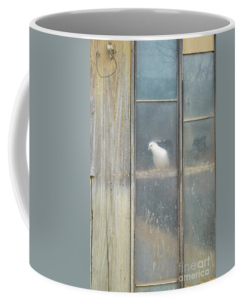 Bird Coffee Mug featuring the photograph Looking Out The Coop by Meandering Photography