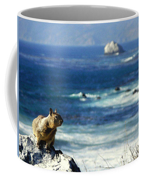 Squirrels Coffee Mug featuring the photograph Lost At Sea by Karen Wiles