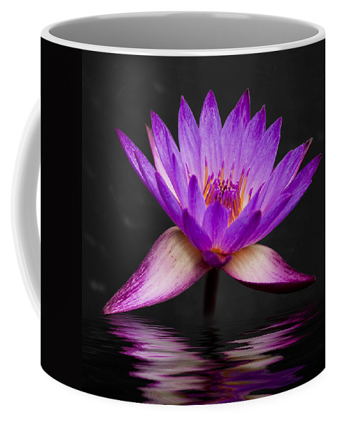 3scape Coffee Mug featuring the photograph Lotus by Adam Romanowicz
