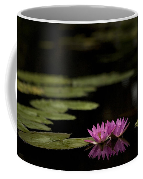 Lily Coffee Mug featuring the photograph Lotus Reflections by Marilyn Hunt