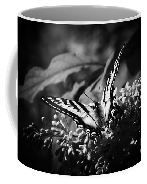 Eclectus Parrot Coffee Mug featuring the photograph Eclectus Parrot - Eclectus Roratus by Sharon Mau